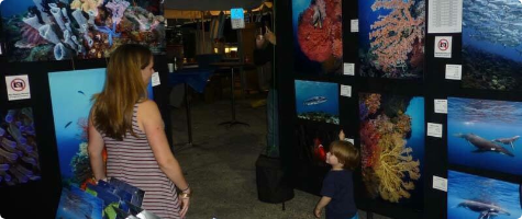Love the Ocean Gallery Booth 2